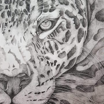Acuarela sobre seda - Puma monocromático